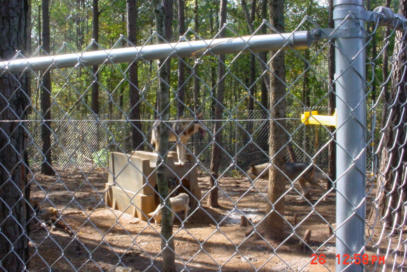 New enclosure